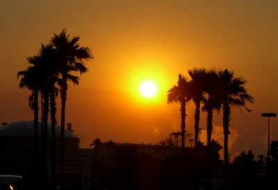 Pretty_sunset_5